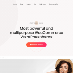 Download WordPress Plugins and Themes discounted
